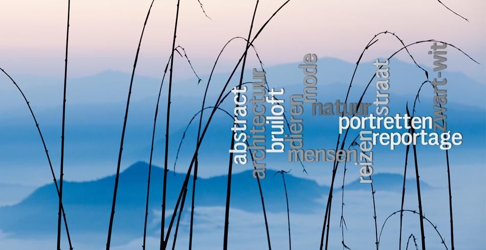 Hans Kwaspen Fotografie: slideshow photograph 4